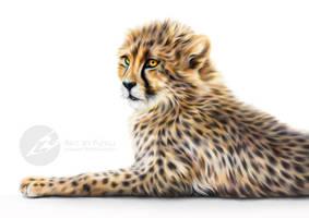 Prideful Spots by ArtbyKerli