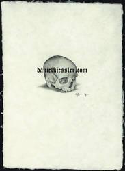 skull 01 by Daniel-Kiessler