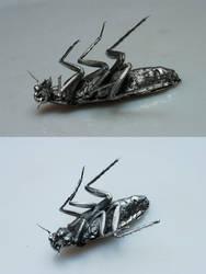 Cockroach Necklace by Jorsh