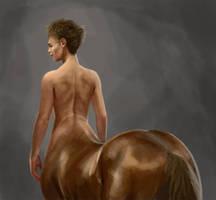 Centaur back study by liminalbean