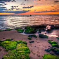 Hawaii, the green stones by alierturk