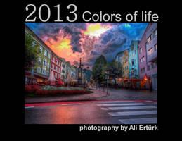 2013 Calendar by alierturk