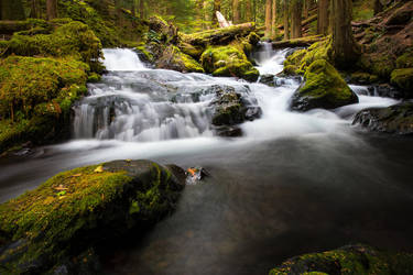 Panther Creek Falls, upstream by alierturk