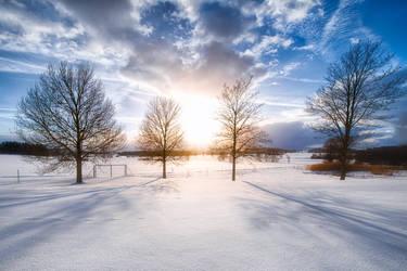Bayern, snow crop by alierturk