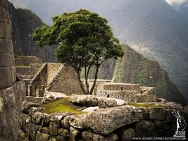 Machu Picchu - Peru -  Shot 24 by ASkBlaster