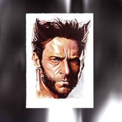 Wolverine by jim00