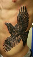 Raven in Flight by Phedre1985