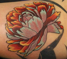 Mark Burn's Peony by Phedre1985