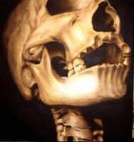 Complementary Skull by darkvixen8