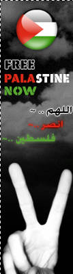 Free Palestine now by R3ood2