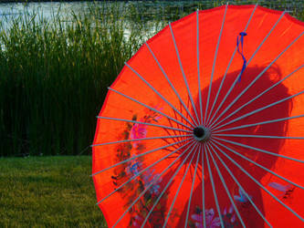 Parasol by zephyrofgod