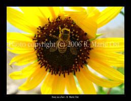 busy as a bee by zephyrofgod