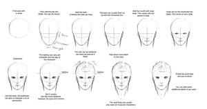 Somewhat Masculine Male Face Tutorial -Front View- by ConkerBirdy