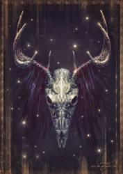 Skull - 02 by Westling
