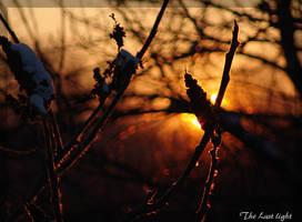 The Last Light by littledubbs