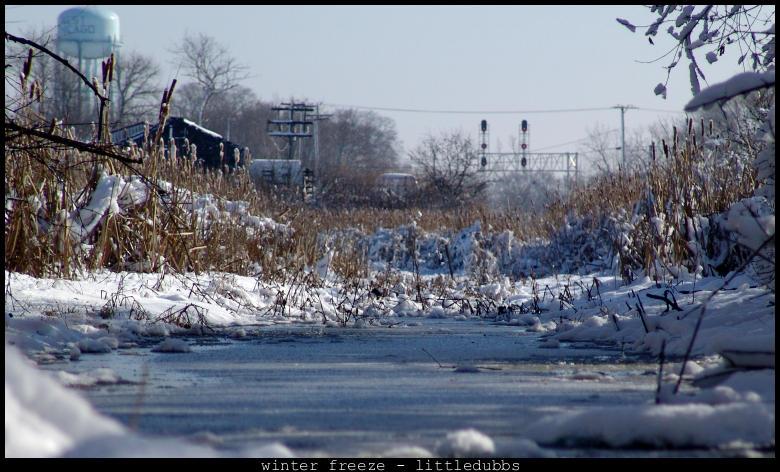 Winter Freeze by littledubbs