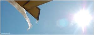 Sun by fotoguerilla