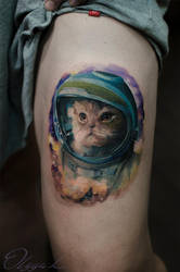 Spacey cat by Olggah