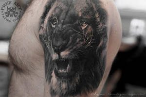 Lion by Olggah