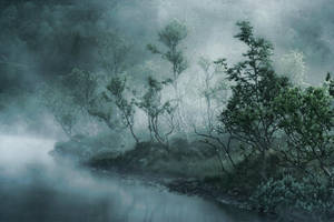 The Forest Fog by Heimstrekka
