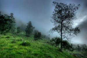 The foggy Hill by Heimstrekka