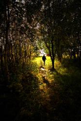 I'll Follow You by Heimstrekka