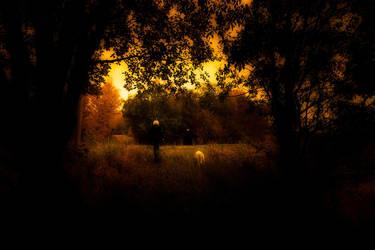 Fall by Heimstrekka