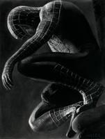 Spiderman by Eddyvl