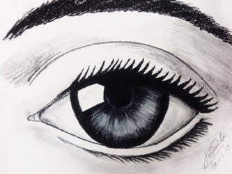 An attempt to draw a realistic eye :D by PritKK