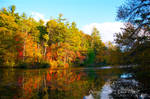 Fall At Carl Sandburg's  7426 by TommyPropest-Candler