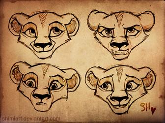 Cub Zira Sketches by EmilyJayOwens