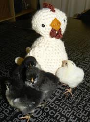 Mother Hen by Chookums