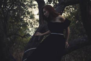 Wooden witch by lightlanaskywalker