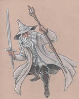 Gandalf the Grey (wearing grey) by travisJhanson