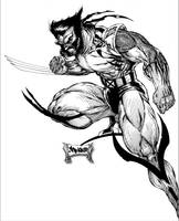 Wolverine raw by roo157