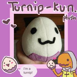PKMNC: Real live turnip-kun by scilk