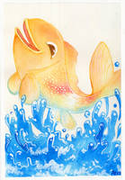 The koi are laughing by scilk