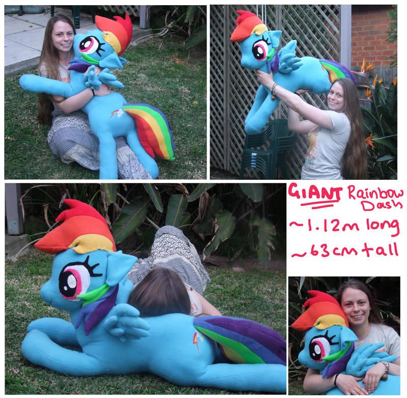 Giant Rainbow Dash Plushie By Scilk On Deviantart