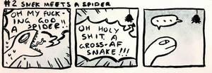 Snek meets a spid by scilk