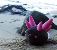 Pyukumuku on the beach by scilk