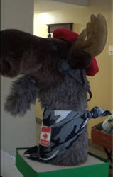 Commandor Moose 2 by RaptorRed79