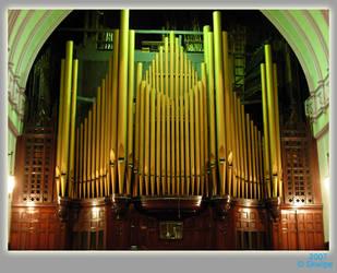 Organ by skwipe