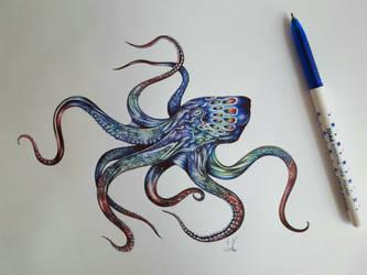 Octopus! by EmilyArtPoland