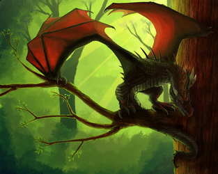 Wyvern of the Wood by Leundra