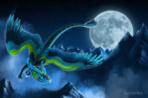 Night flight by Leundra