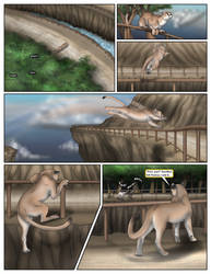 Toyarohco: The Local Cat (Promotional Page) by cretaceousisle