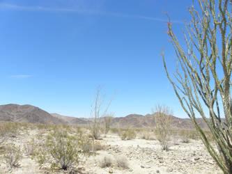 Desertscape by planeteleven