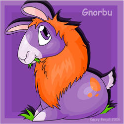 Gnorbu by CombuskensFlame by theneopetsteam