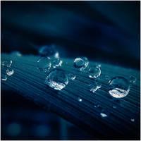 Winter Blue Drops by CasheeFoo