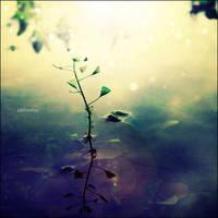 Love nature by CasheeFoo